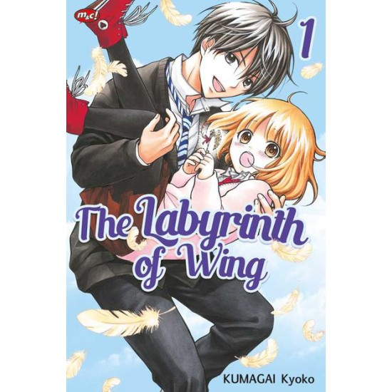 The Labyrinth of Wing 01