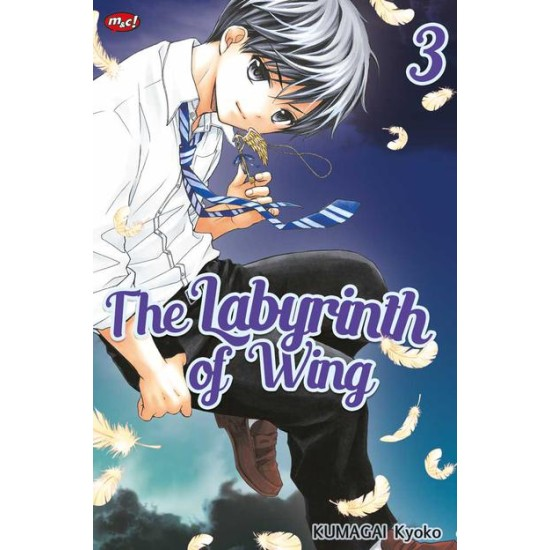 The Labyrinth of Wing 03
