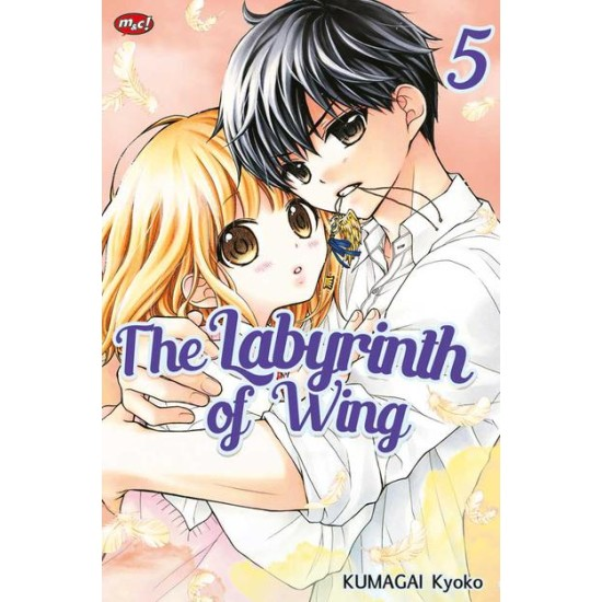 The Labyrinth of Wing 05