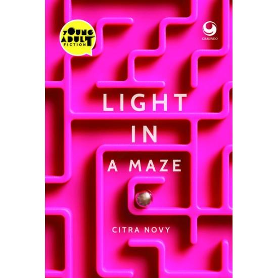 Light in a Maze