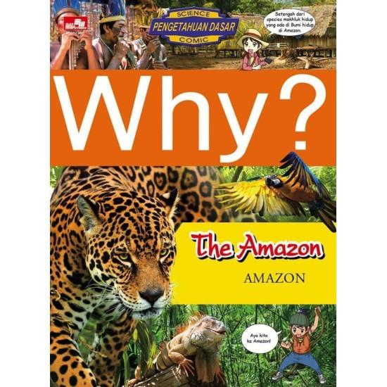 Why? Amazon
