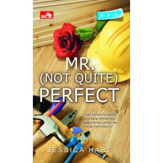 HQ Blush: Mr. (Not Quite) Perfect