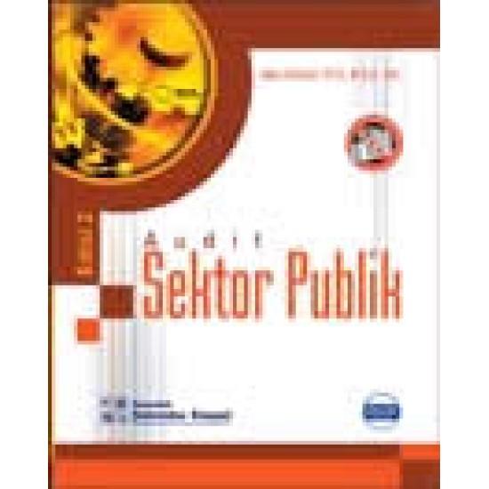 Audit Sektor Publik (e2)
