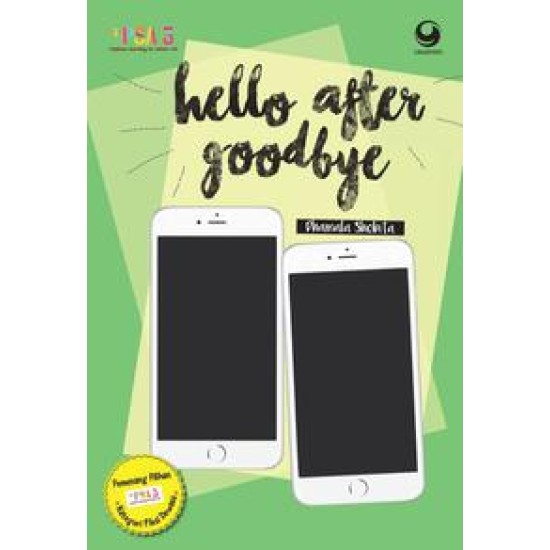 Hello After Goodbye