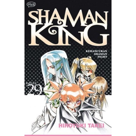 Shaman King 29