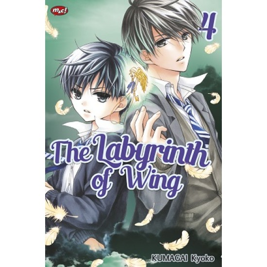 The Labyrinth of Wing 04